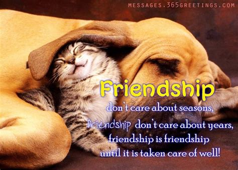 friendship messages images 365greetings com