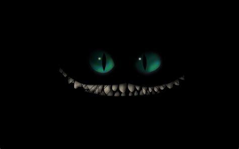 iphone 5s amazon black friday cat twitter header wallpaper 249074