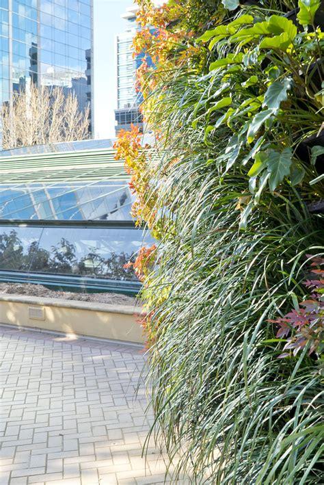 Greenwood Gets A Vertical Garden Green Wall Atlantis Aurora Green Wall Vertical Garden