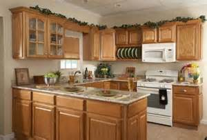 kitchen pantry cupboard designs pantry cupboard designs kitchenidease com