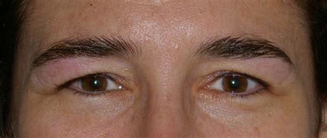 tattoo eyebrows for alopecia natural eyebrow tattoo tattoo collections