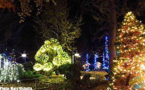 Lights Gilroy Gardens by Micechat Destinations Features Gilroy Gardens Lights