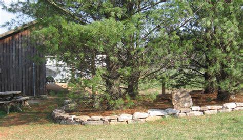 Landscape Rock Around Trees Photo Gallery Of Landscape Mobil Homes Studio Design