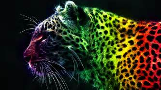 what color is a cheetah digital leopard wallpaper 633417