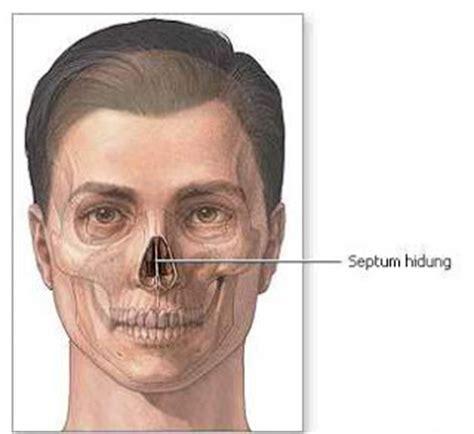 Pelembab Hidung Penyakit Telinga Hidung Dan Tenggorokan