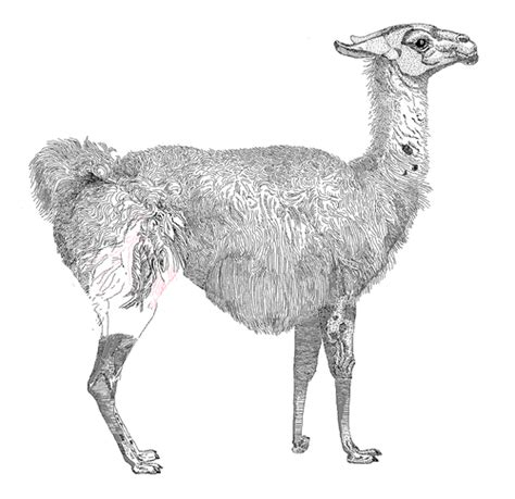 perl pattern matching a z perl 正規表現 アンカー a z z 0x68 perl perl 1 正規表現