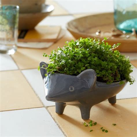 animal planters hedgehog home garden accessories ceramic animal planter