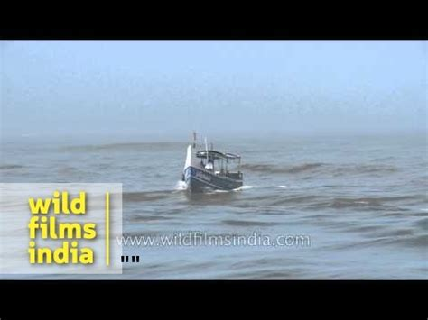 motorboat kerala motorboat sailing on arbian sea kerala youtube