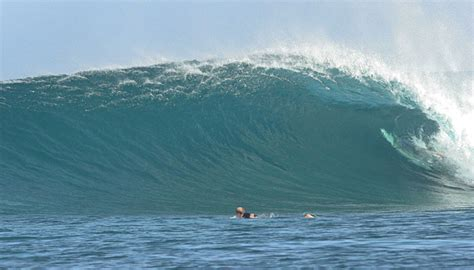 mentawai boat charters surf dive  fish