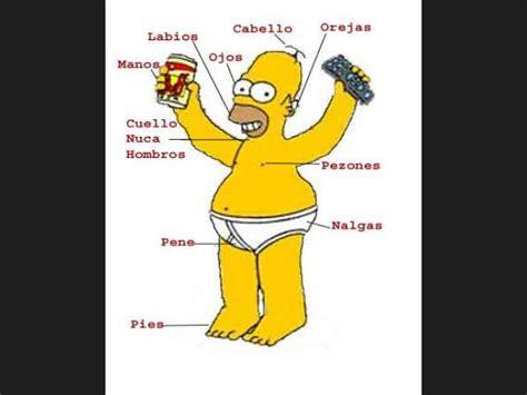 imagenes cosas que no sabias ranking de las 10 cosas que no sab 237 as de homero simpson
