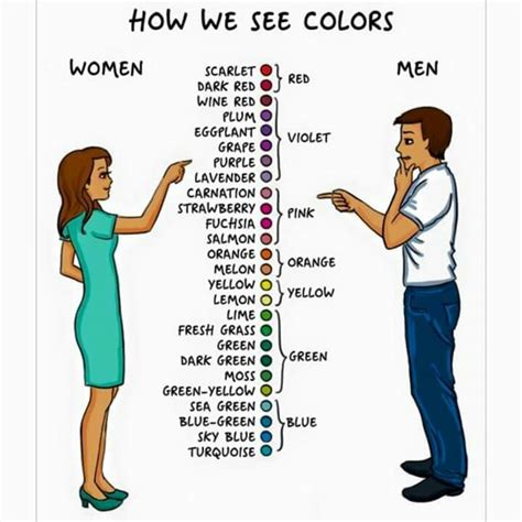 how we see color differences between how we see colors lol