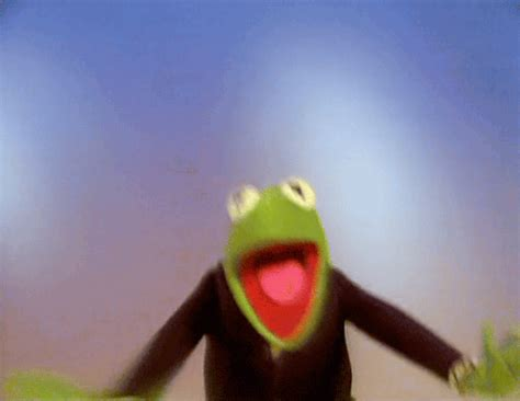 happy gif kermit the frog gifs find on giphy