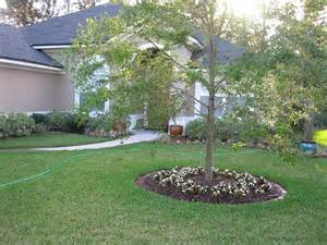 Small Front Garden Ideas On A Budget Front Yard Landscaping Ideas Easy To Accomplish
