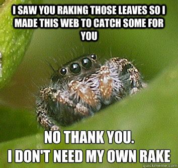 I Saw A Spider Meme - i saw you raking those leaves so i made this web to catch