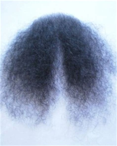 Black Women Pubis Hair Pics | merkin pubic hair black lacey costume wig bald
