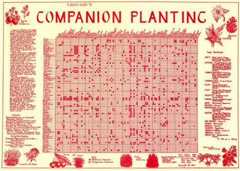 1000 ideas about companion planting guide on pinterest companion planting chart companion planting chart