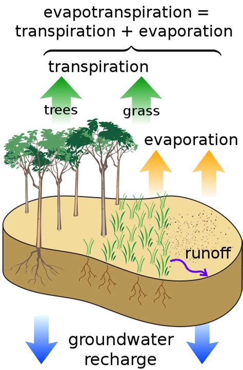 tropical plant biology impact factor the unknown unknowns of global warming watts up with that