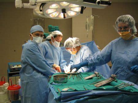 testicoli diversi cancro ai testicoli medicinalive