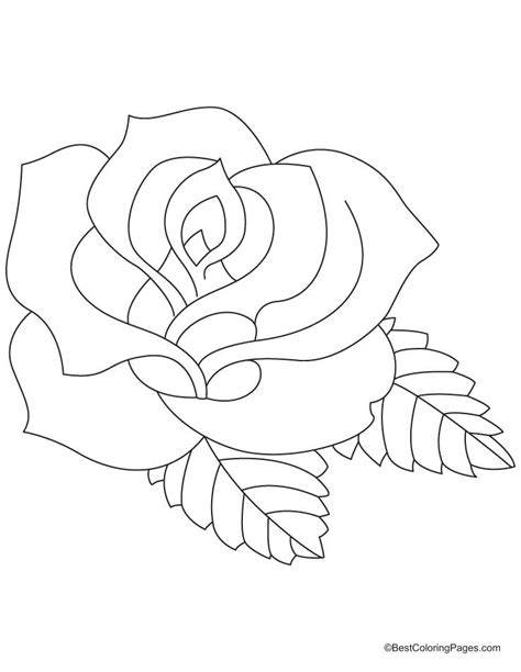 rose coloring pages online rose color page coloring home