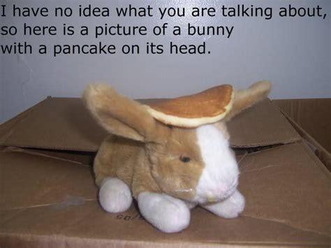 Pancake Memes - pancake bunny know your meme