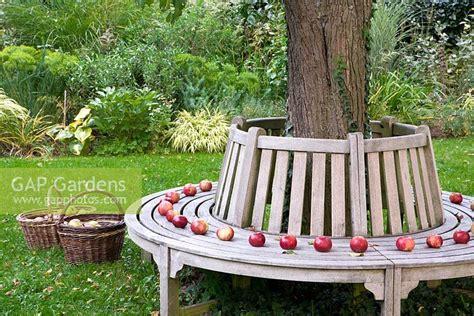 wooden bench around tree gap gardens wooden bench around tree baskets with