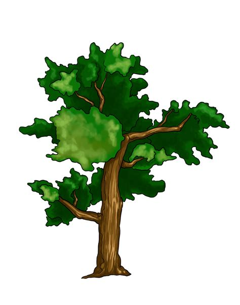 Drawing Trees by How To Draw A Tree Search Results Calendar 2015
