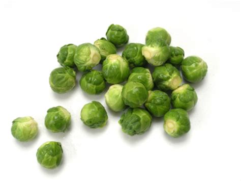 dogs brussel sprouts brussels sprouts broccoli and cabbage in cancer diet