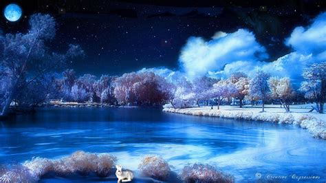 themes high definition wallpaper winter night wallpapers wallpaper cave