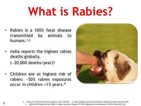 what is st known for rabies dr sharda jain dr rashmi jain dr jyoti