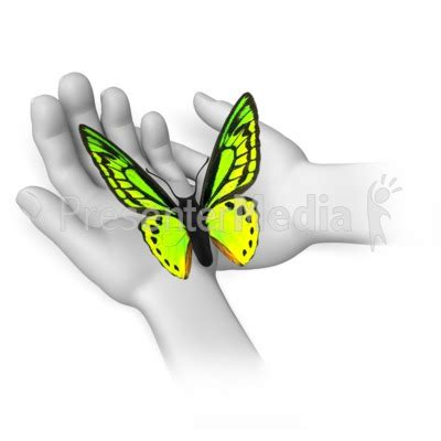 Butterfly Sitting In Hands Wildlife And Nature Great Moving Butterfly For Powerpoint
