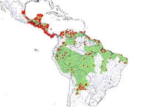 south america dot map maps south america