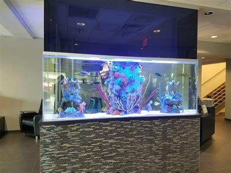aquarium design basics acura motors saltwater aquarium blue planet aquarium