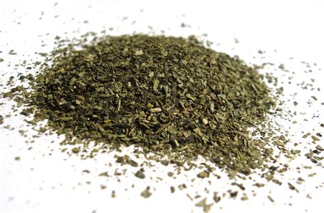 Greentea Mb file leaves of green tea jpg wikimedia commons