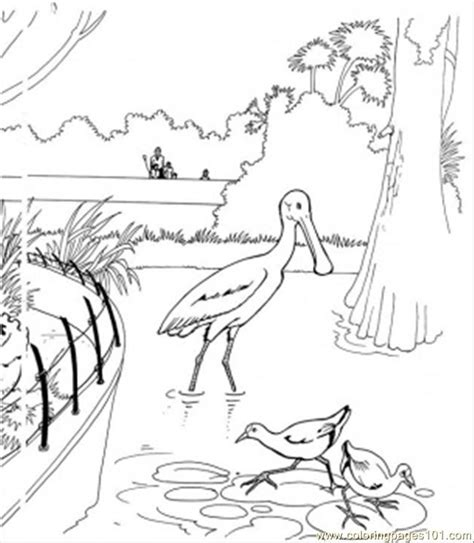 lake animal coloring pages coloring pages