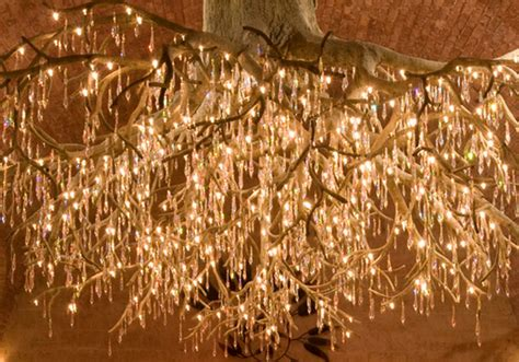 grapevine lighting of the tree napa valley s enchanting tree chandelier lightopia s