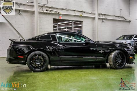mustang shelby snake ford mustang shelby gt500 snake