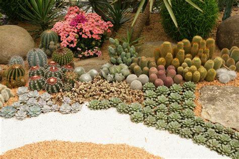 imagenes de jardines con cactus jardines desertico en monterrey