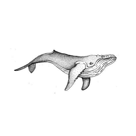 whale tattoo designs best 25 small tattoos ideas on tattoos