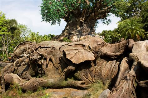 wdwthemeparks the tree of wdwthemeparks the tree of exhibits photos all