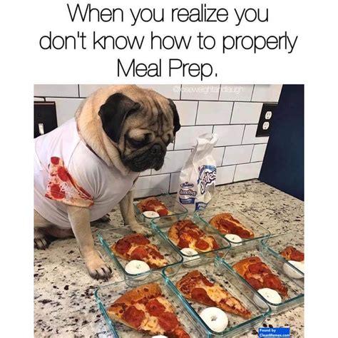 dog memes clean memes