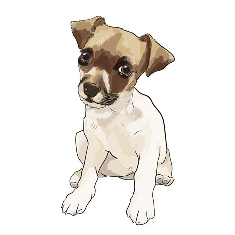 andrew stewart commissioned dog illustrations