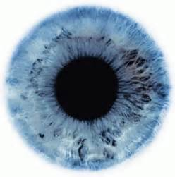 iris eye color big beautiful blue eye the eye si gh t