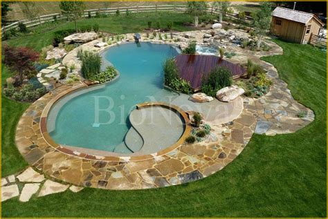 questar pools a bionova 174 dealer partner provides the