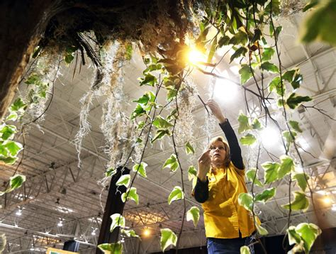 Akron Home And Garden Show by Akron Ohio News Great Big Home Garden Show Coming To Ix