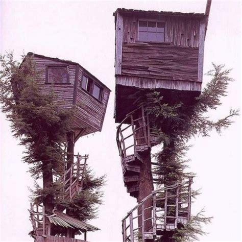 400657 can t get enough of the can t get enough of the adult tree house concept one for