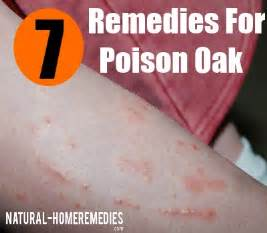 home remedies for poison oak top 7 home remedies for poison oak treatments
