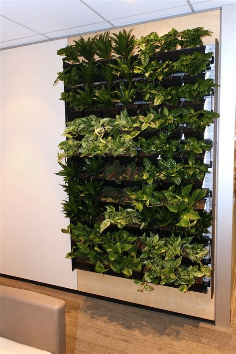 interior plant wall dirtt s breathe living wall interior design ideas