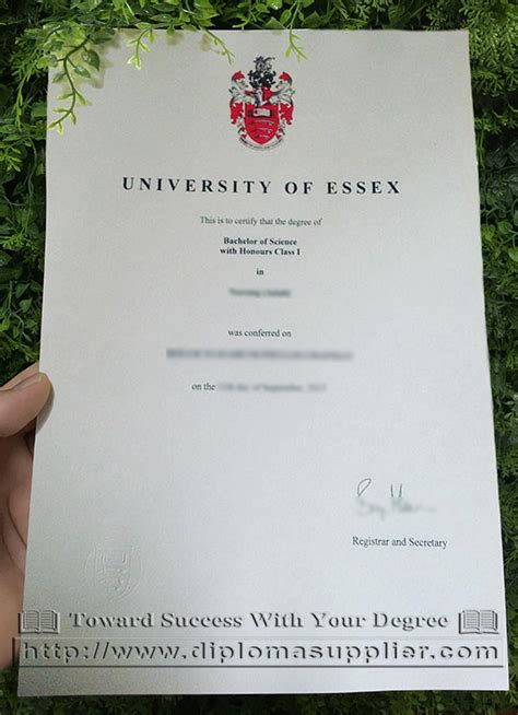 Of Essex Mba Ranking by Of Essex Diploma How To Buy It