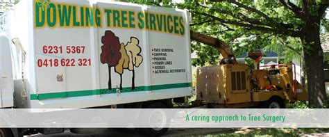 cheap haircuts ealing free tree trimming quotes quotes