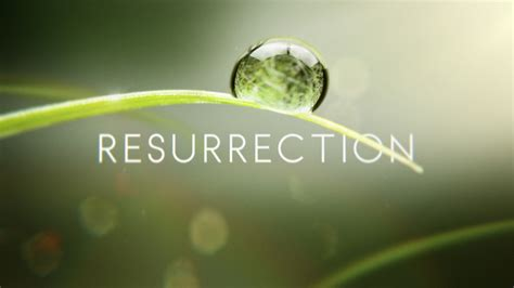 resurrection season 2 will abc show be renewed or abc hopes for ratings resurrection with new drama amid